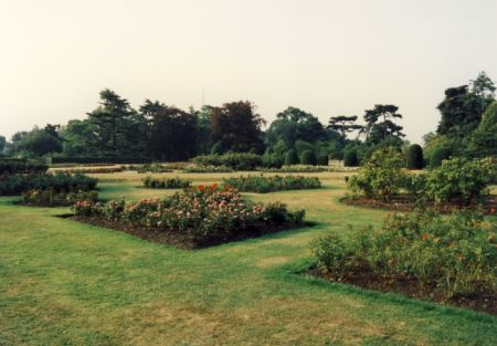 ROYAL BOTANIC GARDENS OF KEW