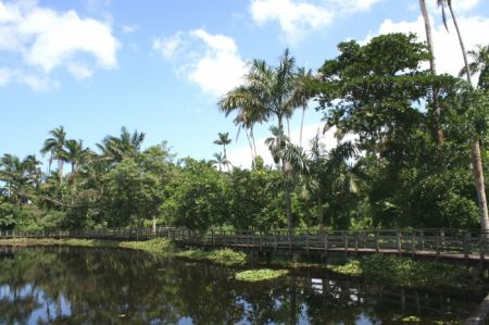 ROYAL PALM RESERVE